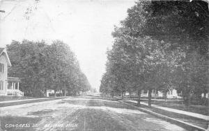 Belding Michigan~Congress Street~Residential Area~1909 B&W Postcard