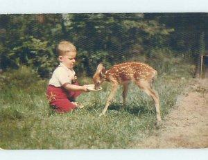 Pre-1980 FEEDING BABY DEER State Of Michigan MI AD2373