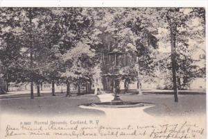 New York Cortland Normal Grounds 1906 Rotograph