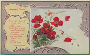 FLOWER ; , Rosy Dawn Poem , 1912