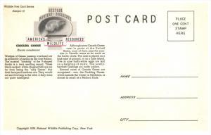 14262  Canada Goose    1939  America's Wildlife Resorces Wildlife series