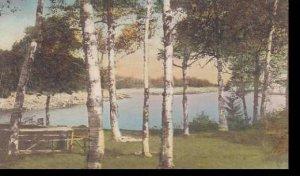 Maine Millbridge Picnic Grove Smiths Cove Handcolored Albertype