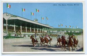 Horse Racing Track Course Tijuana Mexico 1920s postcard