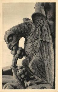 Vintage France Postcard, Notre Dame de Paris Chimere Gargoyle 17V