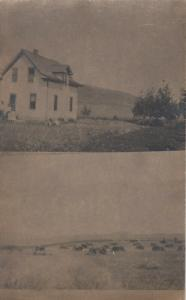 RP; WINDHAM , Montana, 1900-10s ; Split views