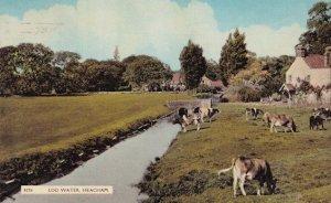 Log Water Heacham Norfolk Old Postcard With Dr Barnardos Postmark Postcard