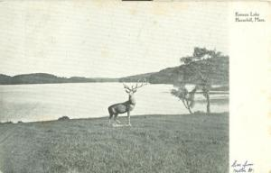 Kenoza Lake Haverhill, Mass 1906 used Postcard