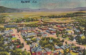 New Mexico Raton Birds Eye View From Goat Hill Curteich