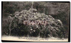 Old Postcard Fontainebleau Forest the sponge rock