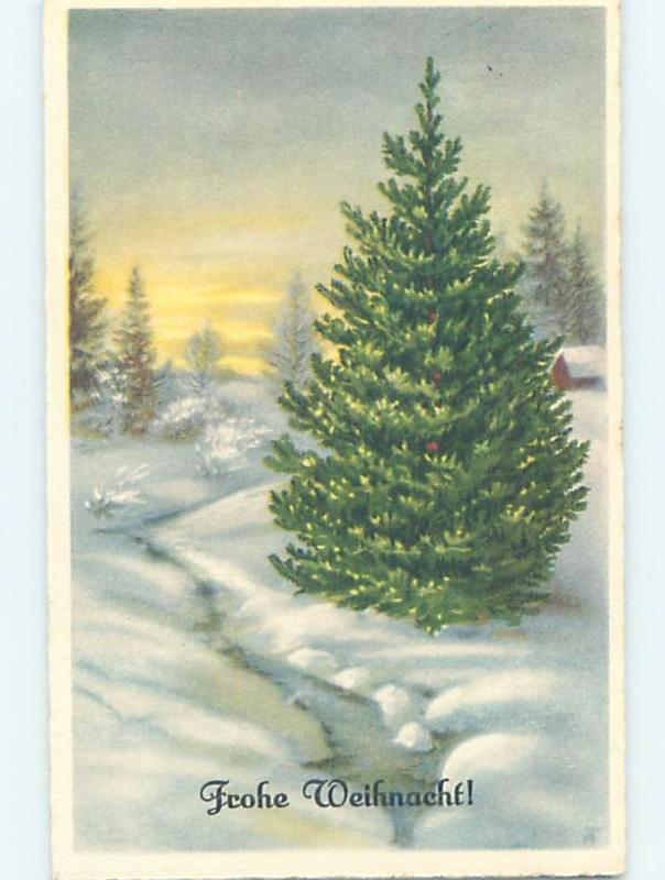 Pre-Chrome foreign BIG WONDERFUL CHRISTMAS TREE BESIDE THE FROZEN RIVER HL8993