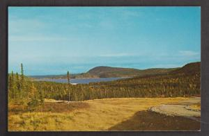 View Of Lake & Blue Mountains Terra Nova National Park - Unused