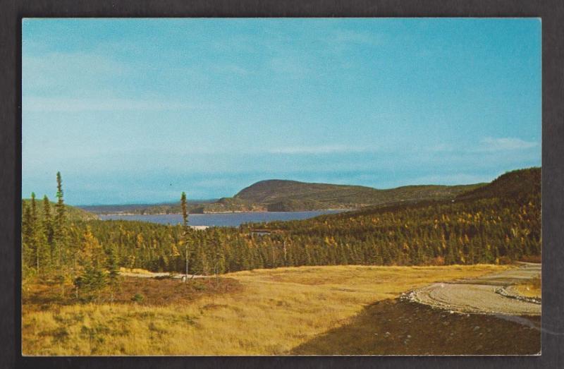 View Of Lake & Blue Mountains Terra Nova National Park - Unused