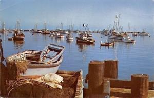 Lincoln Nebraska~A Safe Harbor~Woodmen Accident & Life Insurance 1950s Ad
