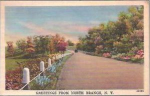 NY North Branch Greetings From 1949