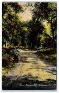 1911 Riverside Park, Wilkes-Barre, PA Postcard