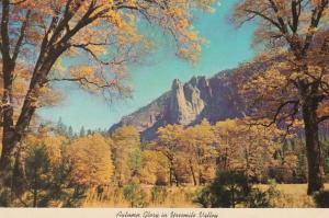 California Yosemite National Park Autumn Glory In Yosemite Valley