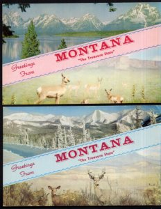 (2) Greetings From Montana The Treasure State - SplitView - Scenery - Chrome