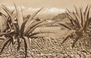 RP, El Ixtacoihuatl, Mexico, 1930-40s