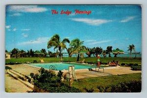 Everglades National Park FL-Florida Flamingo Lodge Swimming Pool Chrome Postcard