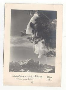 Austria Christmas New Year Defner Real Photo 1955 Postcard