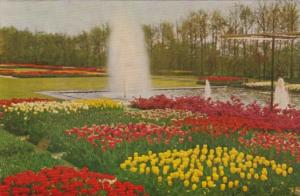 Netherlands Lisse Keukenhof Tulip Gardens