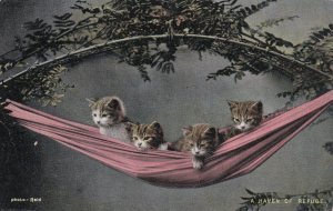 Four Kitties On A Hammock, A Haven Of Refuge, PU-1905
