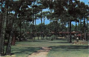 Myrtle Beach South Carolina~El Rancho Motel~Path Thru Pines & Palm~1955 PC