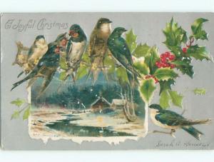 Pre-1907 christmas BEAUTIFUL BIRDS SITTING ON HOLLY BRANCH k0823