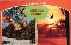 Greetings from Sanford FL, Florida - Oranges from Sunny Florida - pm 1980