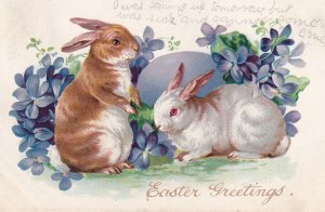 EASTER; PU-1907; Greetings, Two Rabbits, Violets, TUCK