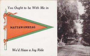 You Ought To Be With Me In Mattawamkeag Pennant Flag