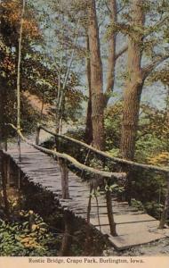 Iowa Burlington Rustic Bridge Crapo Park 1915 Curteich