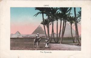 Egypt Cairo The Pyramids