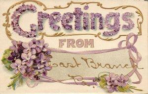 East Branch Pennsylvania~Large Letter Violets~Gold Leaf Embossed~1909 Postcard