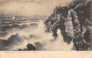 Ireland Co. Donegal, Horn Head, Temple Arch, Rough Sea, Cliff, Seagulls 1908