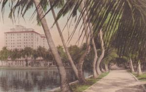 PALM BEACH, Florida , 00-10s ; Lake Trail South & Whitehall