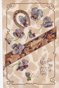PFB Serie 8791 Good Luck With Horseshoe and Violets 1910