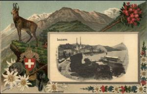 Luzern Switzerland Fancy Border Shield Crest Animal c1910 Postcard