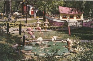 MONTREAL, Quebec, Canada, PU-1986; Children's Zoo & Lafontaine Park, Flamingoes
