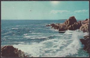 Bald Head Cliffs,Ogunquit,ME Postcard BIN