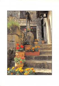 France Lumeires du Terroir Typical Street Flowers Fleurs