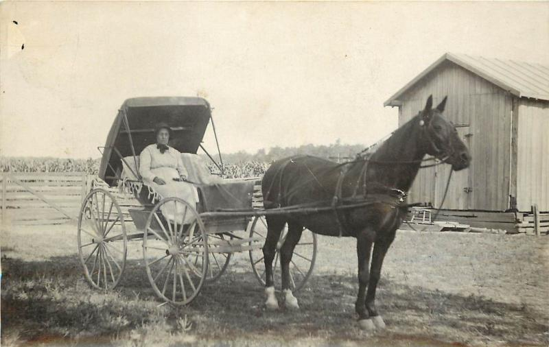 c1910 Real Photo Postcard; Farm Woman Driving Horse & Buggy, Unposted