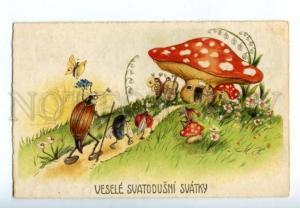 150249 Amanita MUSHROOM May Beetle CELLO Ladybird vintage PC