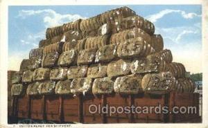 Cotton Farming, Farm, Farmer, Postcard Postcards  Cotton ready for shipment