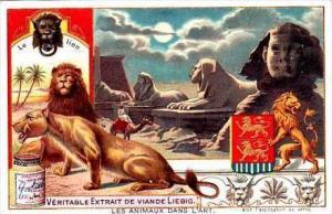 Liebig S758 Animals In Art No 2 Lion