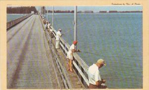 Florida Fishing Off The Causeway Dexter Press