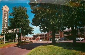 Little Rock Arkansas~Beautiful New Magnolia Court~Flower Sign 1950s PC