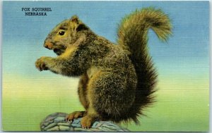 Hastings, Nebraska Postcard THE HOUSE OF YESTERDAY Fox Squirrel Linen c1940s