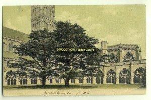 tp2084 - The Cathedral , Salisbury , Wiltshire - FGO Stuart postcard