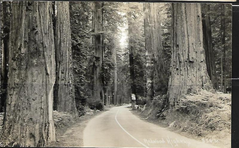 REDWOOD HIGHWAY,  REAL PHOTO POSTCARD